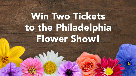 Philadelphi-Flower-show